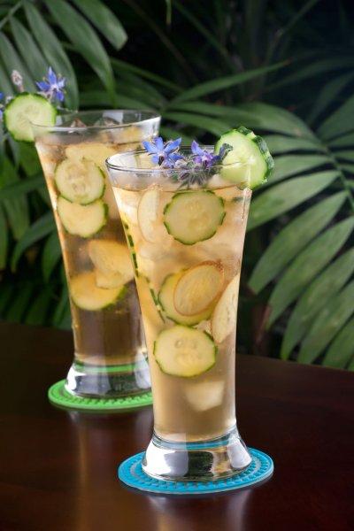 Ingwer Gurken Zitronen Wasser Rezept Kochrezepte At